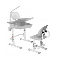Ergonomic Desk & Chair with Accessories